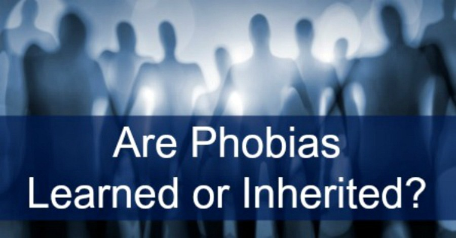 Are Phobias Learned or Inherited? - https://healthpositiveinfo.com/are-phobias-learned-or-inherited.html