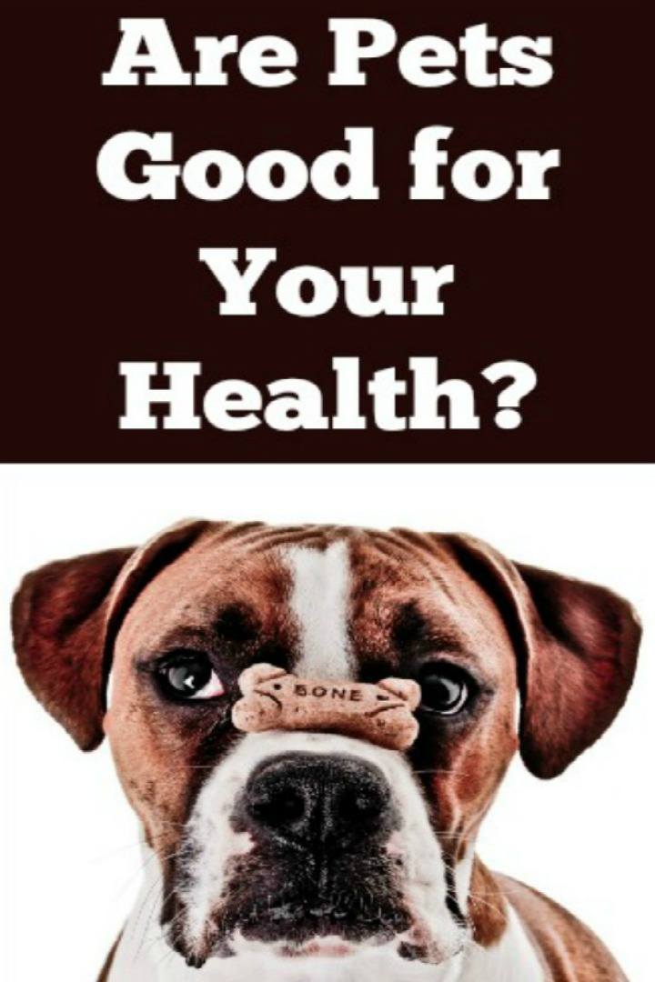 Are Pets Good for Your Health? - https://healthpositiveinfo.com/are-pets-good-for-your-health.html
