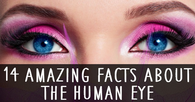 14 amazing facts about the human eye