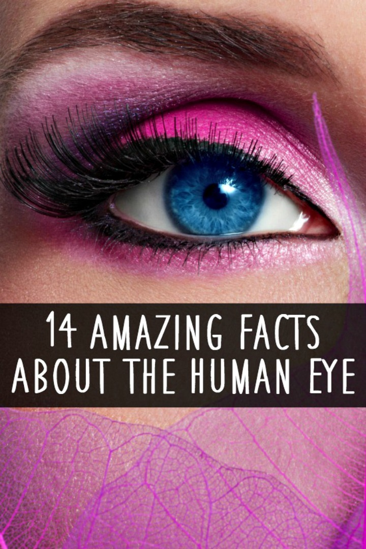 14 Amazing Facts About the Human Eye - https://healthpositiveinfo.com/facts-about-human-eye.html