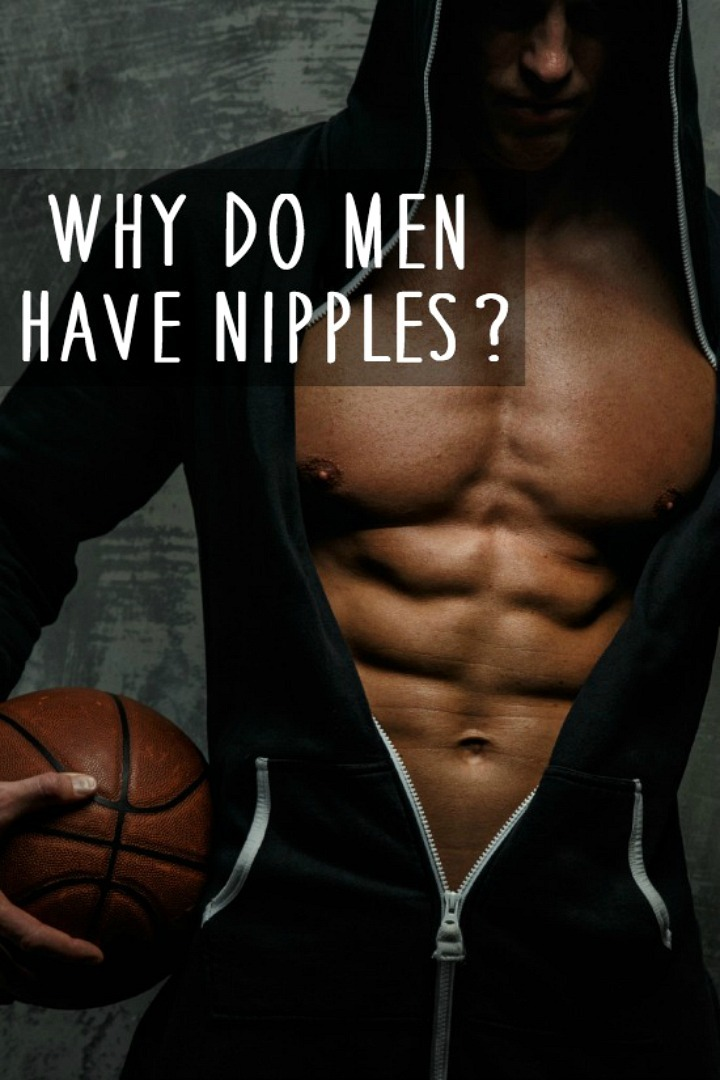 Why Do Men Have Nipples? - https://healthpositiveinfo.com/why-do-men-have-nipples.html