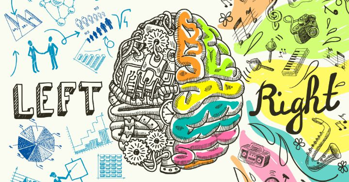 Are you Right-Brained or Left-Brained?