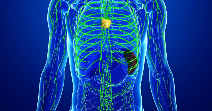 How to Drain Your Lymph System and Why It's Really Important