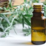 10 Essential Oils To Start Using