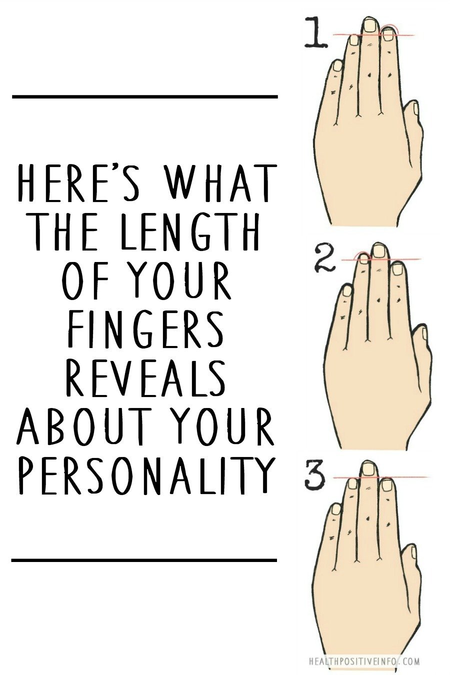 Here's What the Length of Your Fingers Reveals About Your Personality ~ https://healthpositiveinfo.com/length-of-your-fingers-personality.html