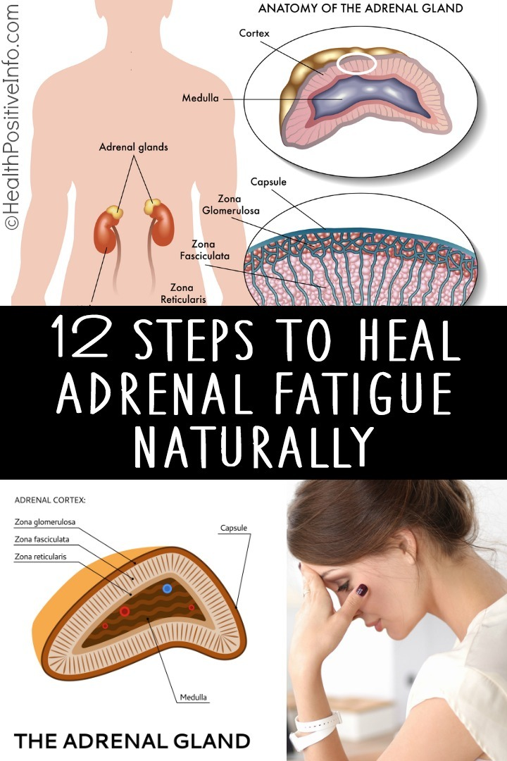 12 Steps to Heal Adrenal Fatigue Naturally ~ https://healthpositiveinfo.com/heal-adrenal-fatigue-naturally.html